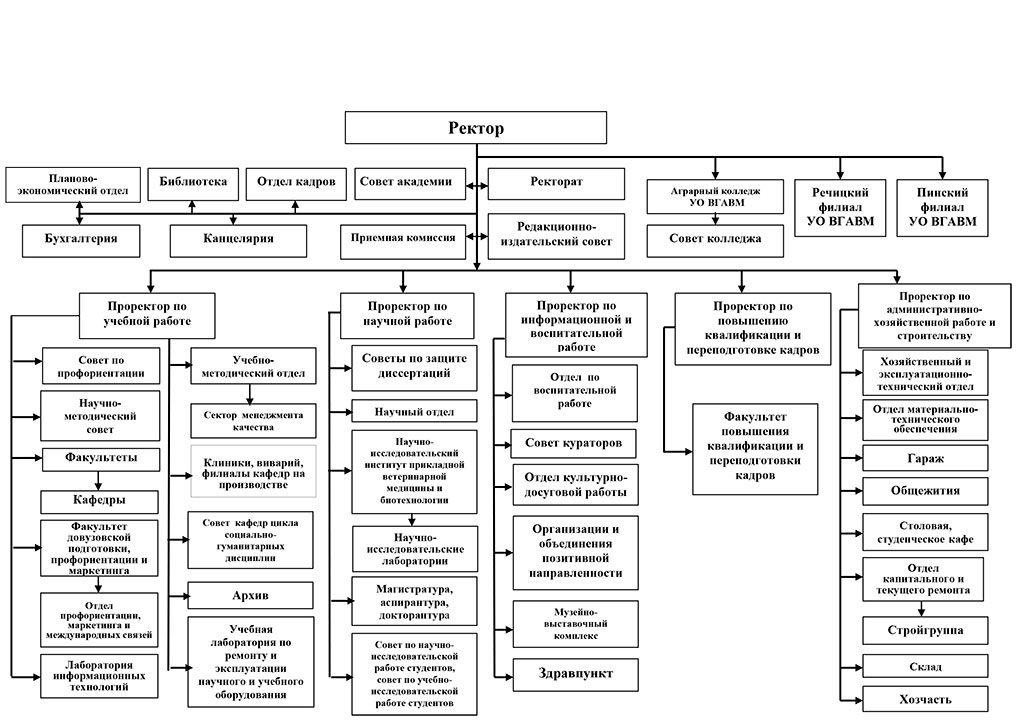 Структура УО «ВГАВМ»
