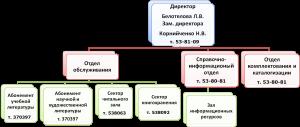 Структура библиотеки УО ВГАВМ