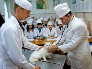 Герасимчик В.А. с группой студентов в клинике на занятиях по болезням мелких животных и птиц, 2011