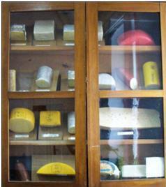 Муляжи сыров