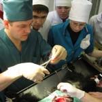 Получение практических навыков проведения операций