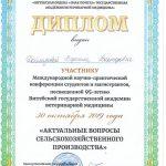 Doilidova-k-95-letiyu-VGAVM-1