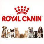 Компания Royal Canin продолжает курс обучающих семинаров по клинической диетологии