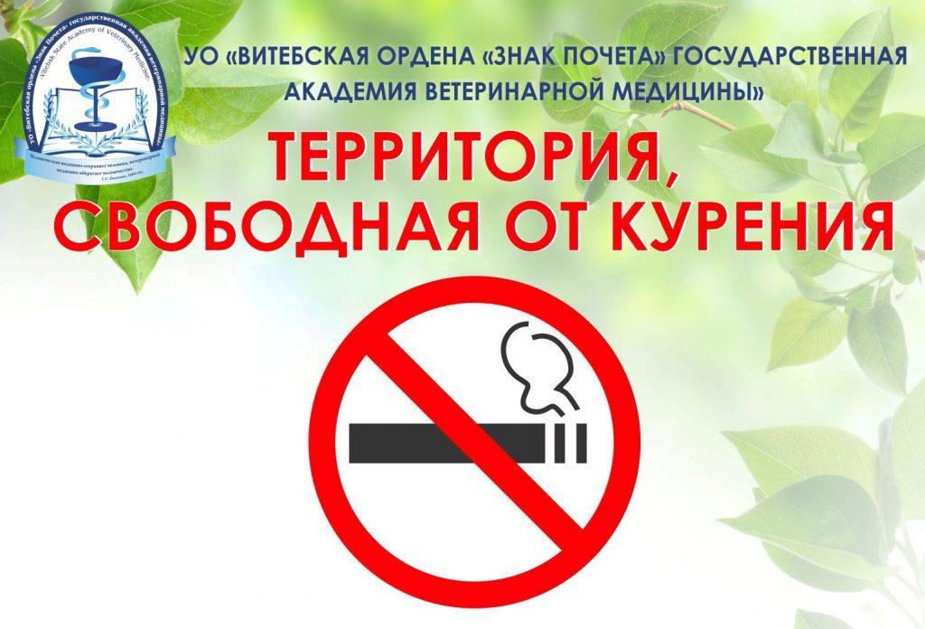 УО ВГАВМ — территория свободная от курения!