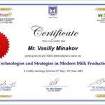 Mr. Vasiliy Minakov