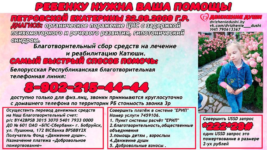 Благотворительный сбор средств на лечение Петровской Екатерины