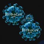Профилактика инфекции СОVID-19