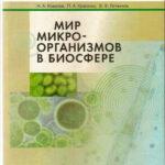 mir-mikroorganizmov-v-biosfere
