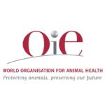 Поздравляем Морозова Д.Д. с назначением на должность регионального офицера OIE!