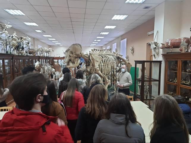 Борисовский лицеисты в Анатомическом музее ВГАВМ
