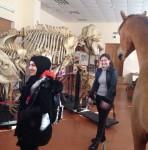 Урок-экскурсия в музей кафедры анатомии сельскохозяйственных животных и библиотеку академии