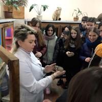 Работа с учащимися аграрных классов в террариуме кафедры зоологии