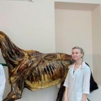 Началась учебная практика у студентов 1 курса факультета ветеринарной медицины
