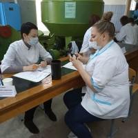 Экзамен по практическим навыкам и умениям у студентов 3 курса специальности «Зоотехния» ССПВО
