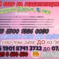 Сбор средств Даше Спивак
